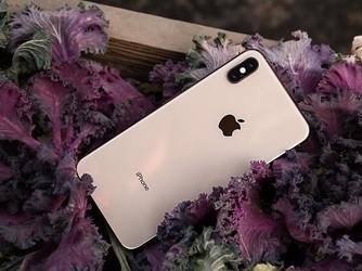 够用就好 iPhone XS Max的强大表现绝对不会让你失望