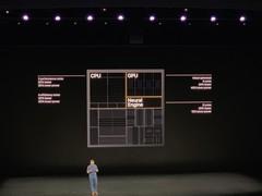 iPhone 11 Pro系列亮相 拥有两种尺寸 搭载A13处理器