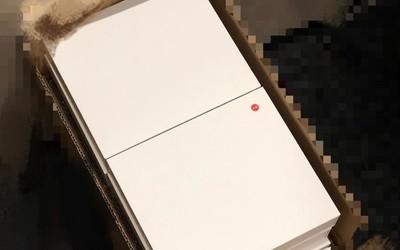 疑似坚果Pro3新机包装盒曝光:定位中端或10月份发布