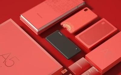 海信阅读手机A5美好新年定制礼盒 过节就送这个了!