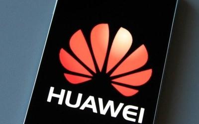 2019年中国智能手机市场份额报告 华为领跑逆势上扬