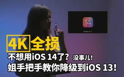 不想用iOS 14了?没事儿,姐手把手教你降级到iOS 13