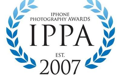 IPPA2020摄影大赛获奖名单公布 20位中国摄影师获奖