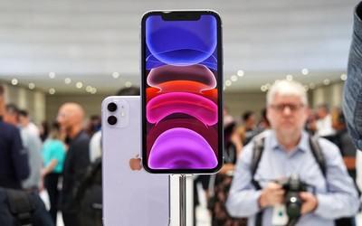 """拼多多將上線""""百億補貼節"""" iPhone 11降至4000元以下"""