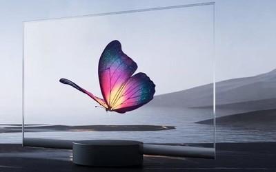 为什么做透明电视?雷军:想做蝴蝶效应最先抖动的翅膀