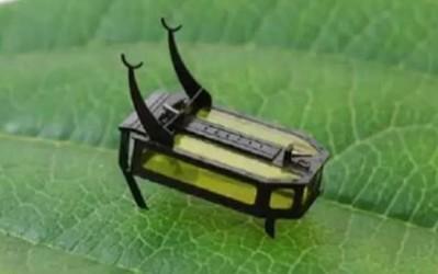 """无电池""""甲虫""""微型机器人 靠甲醛驱动 体积更小更环保"""