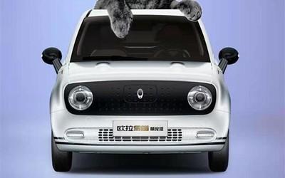 欧拉黑猫萌宠版正式上市! 可爱小车能实现301km续航