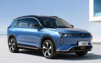 威马汽车发布全国新能源车主图鉴 北京最壕车主多