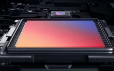 华为P50系列有望全系标配IMX800 5000万像素1英寸大底