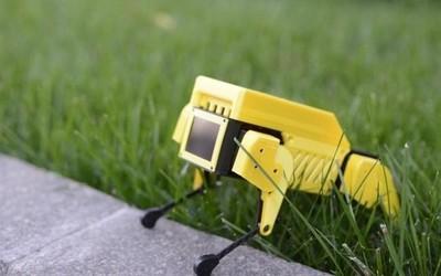 開源微型機器狗Mini Pupper開售 眾籌價格589美元