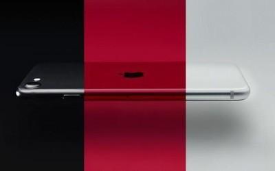 爆料!iPhone SE Plus明年到来 SE 3推迟至2024年发布